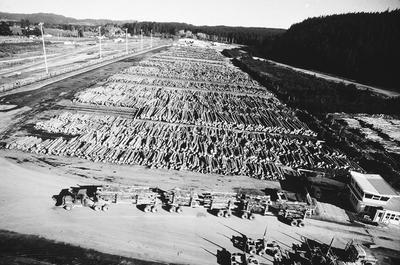 Tasman Forestry Ltd: 1981 Loaded truck and the Murupara logyard, aerial view