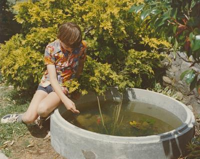 Hume Industries (NZ) Ltd - Hume Pipe Co: 1978 garden setting with concrete lily pond
