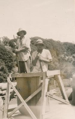 Wright, Stephenson & Co Ltd: Feb1930 Harvesting Cocksfoot -  bagging on property of F W Williams, Akaroa, Canterbury