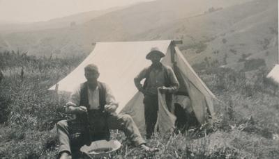 Wright, Stephenson & Co Ltd: Feb1930 Harvesting Cocksfoot -  harvesting camp on property of F W Williams, Akaroa, Canterbury