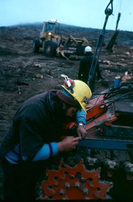 Tasman Forestry Ltd: 1981 Lumber-jack sharpening his chainsaw