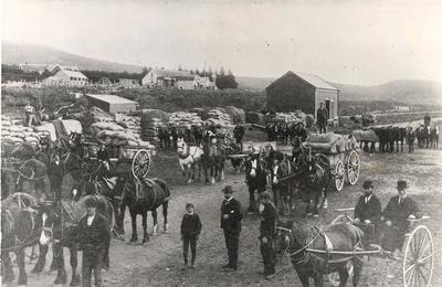 Wright, Stephenson & Co Ltd: 1888 Stacking grain at Otamita Railway Station, Tasman District