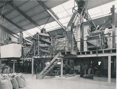 Wright, Stephenson & Co Ltd: 1956 Inside unidentified seed cleaning plant