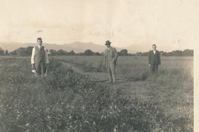 Wright, Stephenson & Co Ltd: 1920 Farm Economy - G W Gellatly; H G Wilton; J S Hunt;