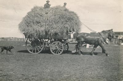 Wright, Stephenson & Co Ltd: 1930 Horse drawn cart with two men and dog