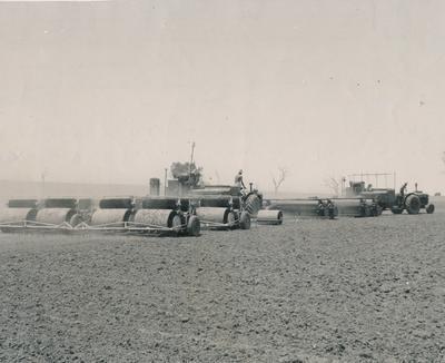 Wright, Stephenson & Co Ltd: 1958 Harvesting clover seeds with 16-roller plant on L Turner's property; J Parkinson; J Wood;