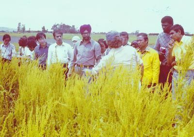 Wrightson NMA Ltd: 1978 Kimihia, Waikato - Don Bishop with group of overseas students from Massey University