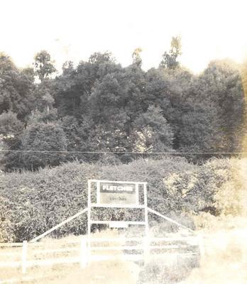 Fletcher Timber Co Ltd - Ruatahuna Mill, Bay of Plenty Region: 1970 Fletcher Timber sign, ? Ruatahuna