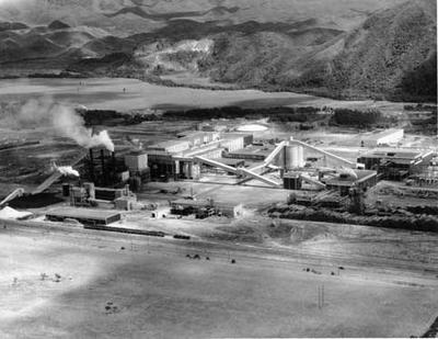 Tasman Pulp & Paper Co Ltd: 1955 Kawerau