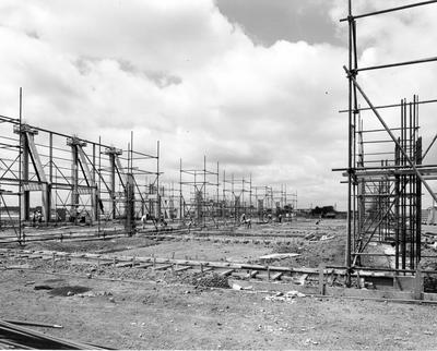 Fletcher Construction Co Ltd - Hangar and Workshop for TEAL, Auckland Airport, Mangere: 1964 completed building