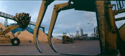 Tasman Pulp & Paper Co Ltd, Kawerau: 1990 log loader
