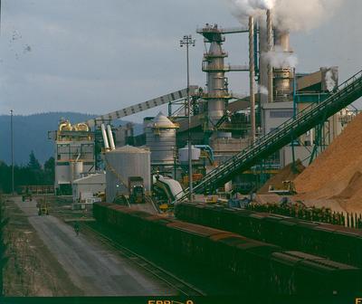 Tasman Pulp & Paper Co Ltd, Kawerau: 1990 the Kawerau mill