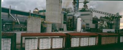 Tasman Pulp & Paper Co Ltd, Kawerau: 1990 pulp in carriages on the railway line