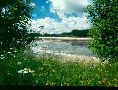 Tasman Pulp & Paper Co Ltd, Kawerau: 1991 secondary treatment effluent pond