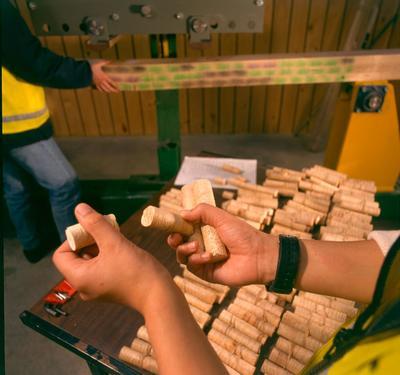 Fletcher Challenge Forests Ltd: 1997 Kawerau Remanufacturing Plant - Timber scanner for defects