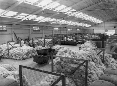 Wright Stephenson & Co Ltd - Invercargill Branch, Southland: 1956 Sections of the Reclassing and Fleece Binning at the Wool Store
