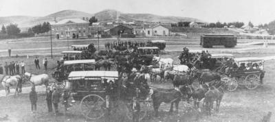Wright Stephenson & Co Ltd - Invercargill Branch, Southland: 1980 Drays collecting their passengers at Winton, before heading to the sheep sale at Burwood