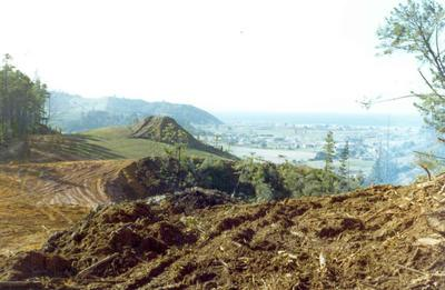 Tairua Heights subdivision, Coromanel Peninsula: 1978 development stage II - view from hill top of subdivision looking out over Tairua village to coast; 1978; Photograph