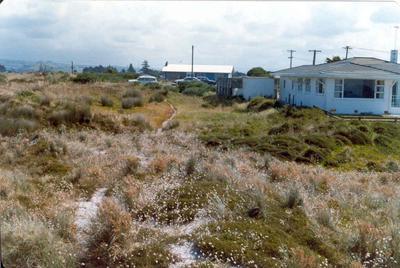 Papamoa Beach, Tauranga, Bay of Plenty: 1980 dunes and houses; 1980; Photograph