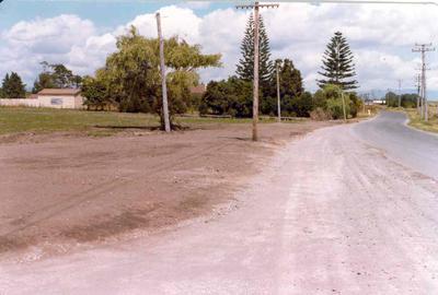 Matapihi Beach, Tauranga, Bay of Plenty; 1978; Photograph