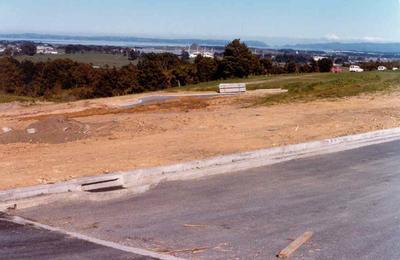 Totara Heights subdivision, Manuwera, Auckland; Oct 1979; Photograph