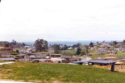 Broadvale subdivision, East Coast Bays, Auckland; May 1976; Photograph