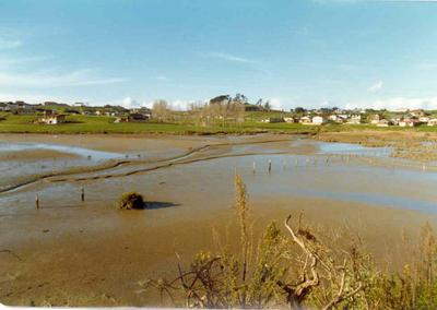 The Heights subdivision, Half Moon Bay, Auckland - stage six; Jul 1977; Photograph